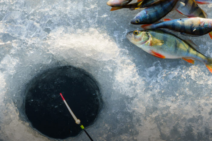 Ice fishing in Malam Jabba is a winter treat from the North