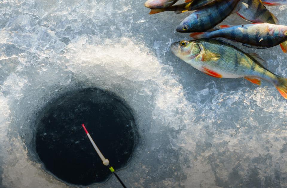 Malam Jabba Ice Fishing